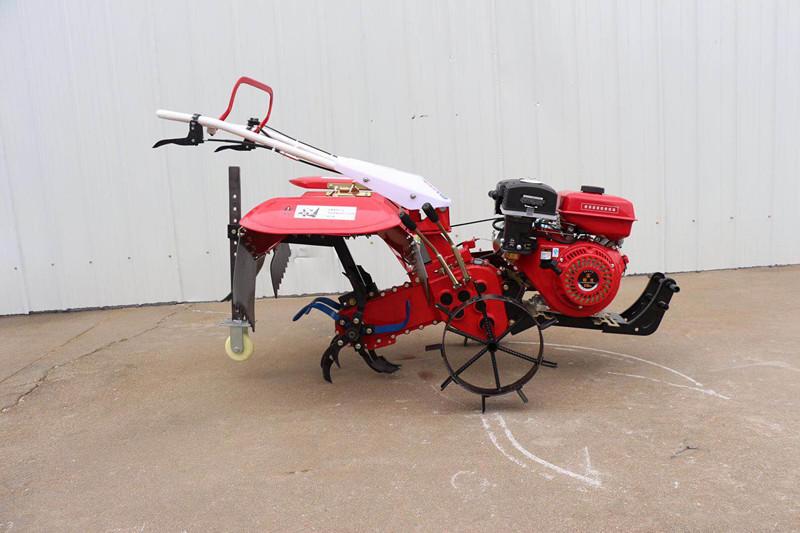 新型后旋式四驱微耕机 大棚翻地松土机 ZC-188型手扶式柴油开沟机志成机械示例图3