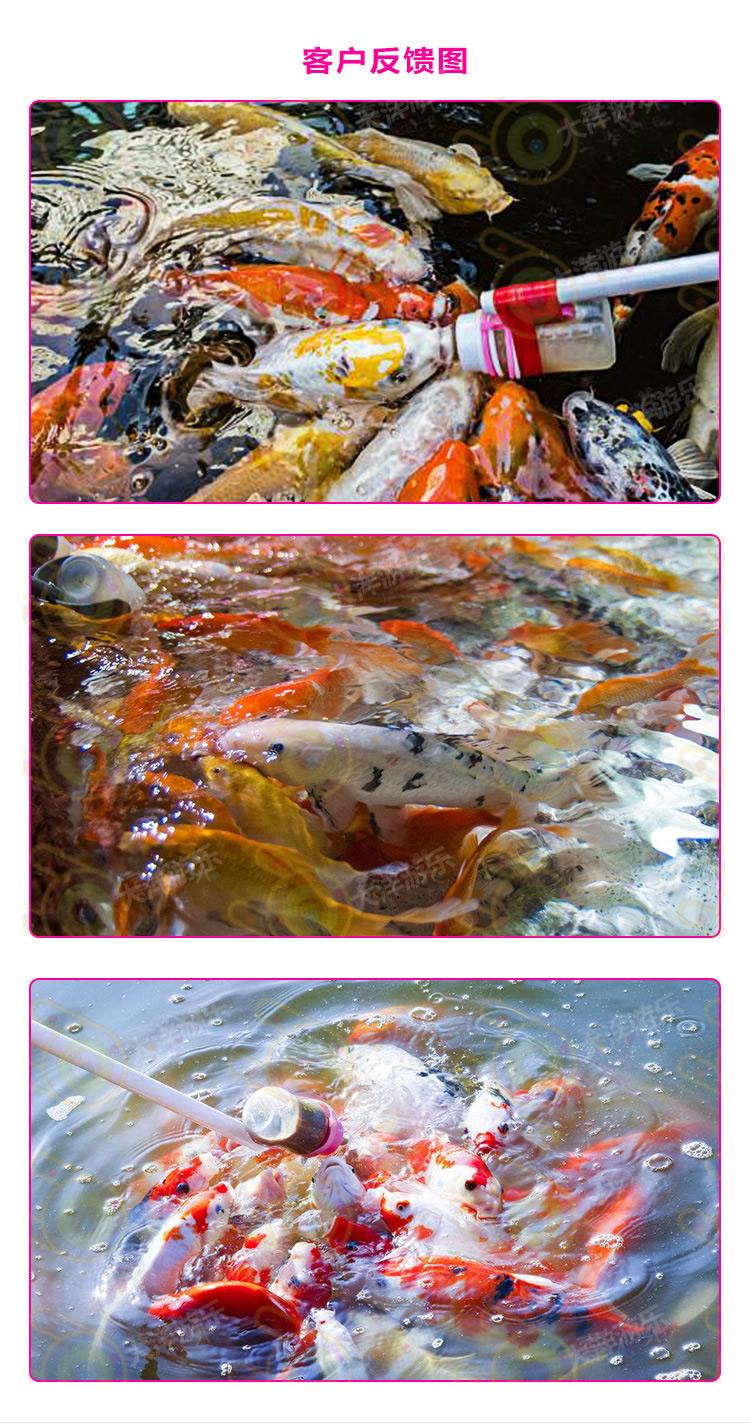 吃奶鱼和旋转秋千鱼升级进化活鱼 们玩的开心吃奶鱼也叫长寿鱼喂奶鱼,娃娃鱼或者 鱼,溜溜鱼,奶嘴鱼示例图41