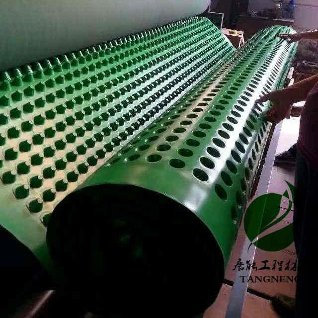 排水板復合土工布 復合一體排水板適合用于地下車庫頂板 唐能為您提供施工技術支持