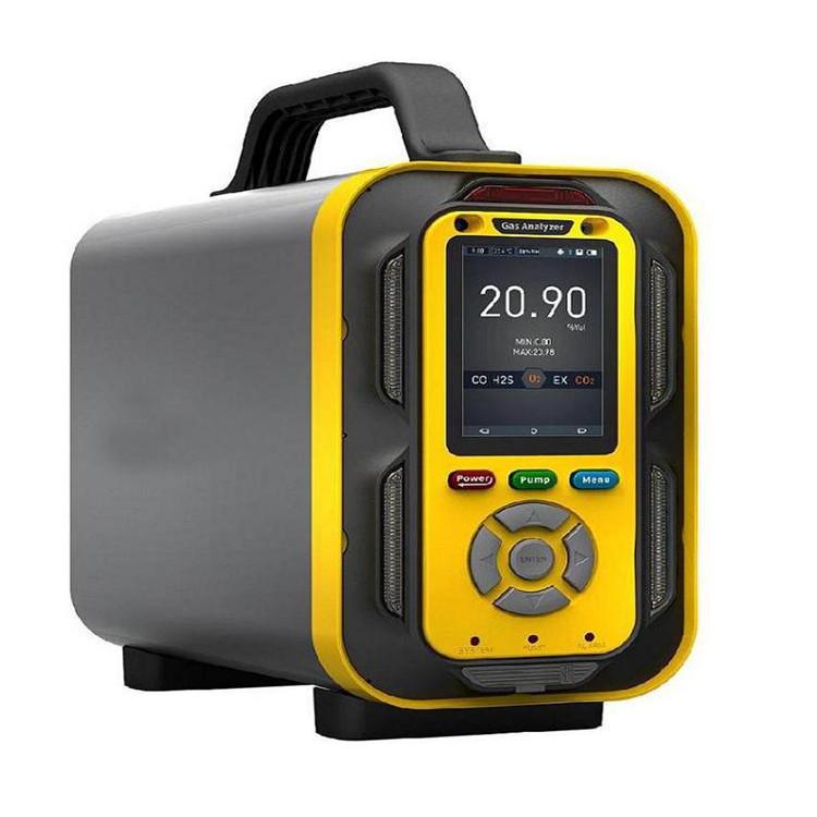 LB-MT6X泵吸手提式可燃气体检测仪(包括6种气体)示例图1