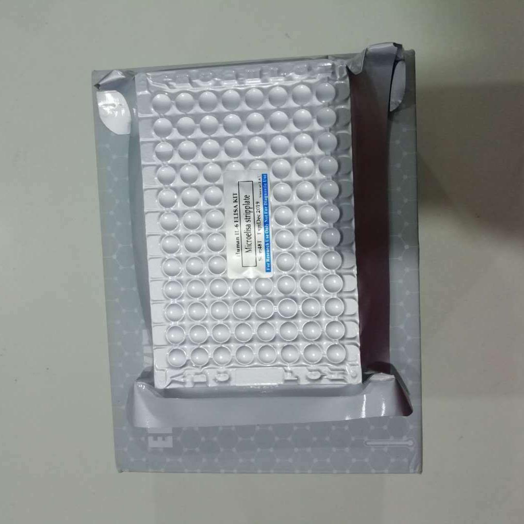 睿信生物 兔D二聚体D2Delisa试剂盒