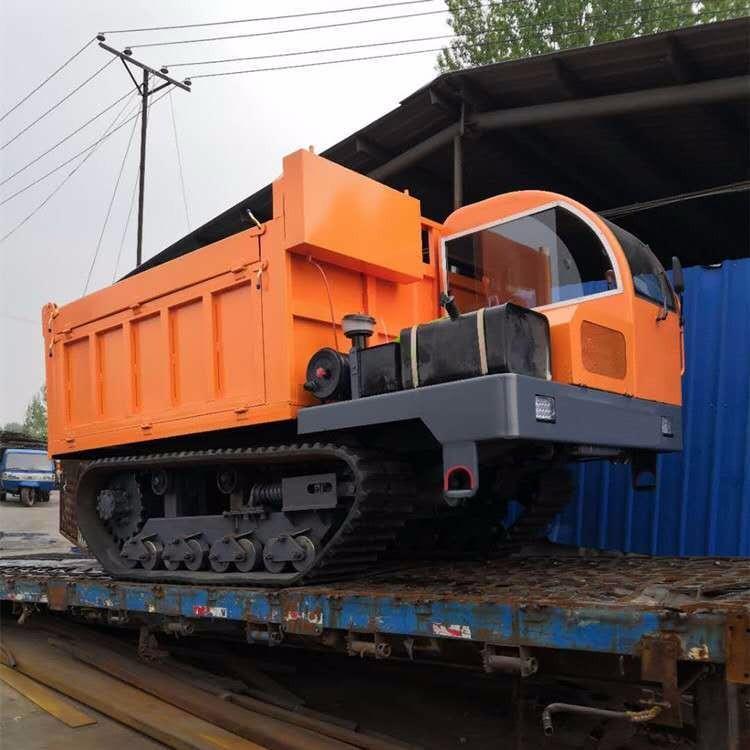 大型爬山爬坡能手履带运输车水利工程运输车4102履带爬山王