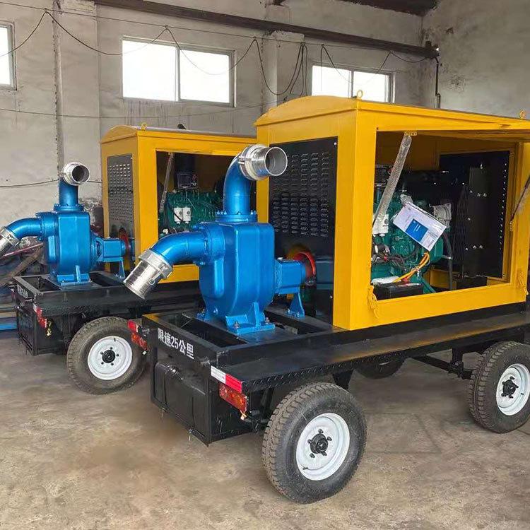 鼎東 柴油機水泵 柴油機抽水泵 防汛排污移動泵 支持定制