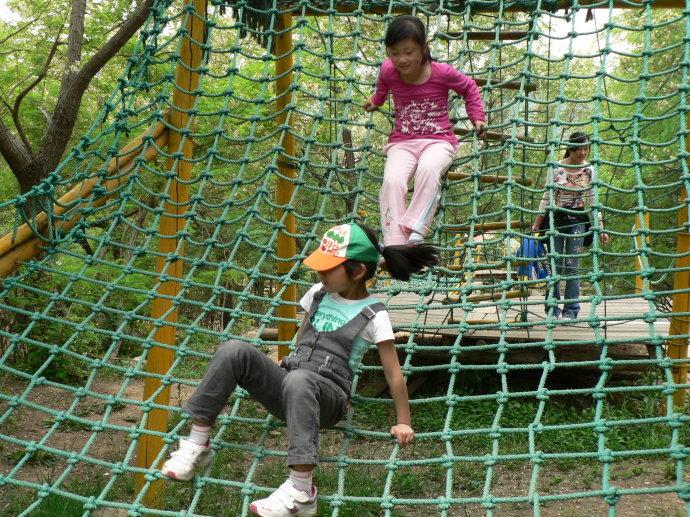 大洋大型游乐场儿童乐园设备体能乐园_专业定制儿童户外体能乐园训练游乐设备示例图7
