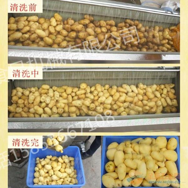 利杰LJ-2000土豆去皮清洗机  土豆去皮机 土豆磨皮机 专业生产根茎类蔬菜清洗机 胡萝卜清洗机 洋葱毛辊去皮机示例图6