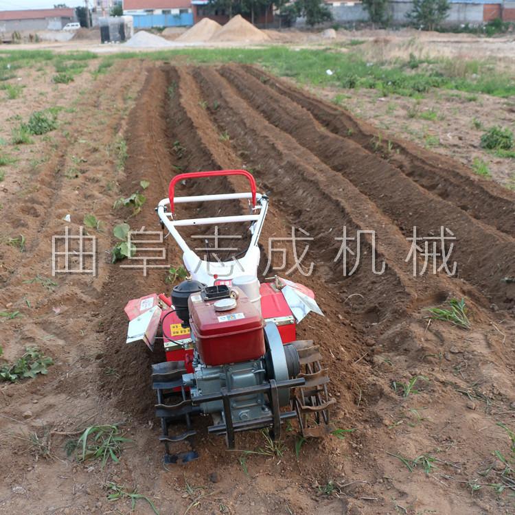 厂家直销 四驱微耕机 汽柴油大马力微耕机 ZC-170型旋耕锄草机 志成示例图8