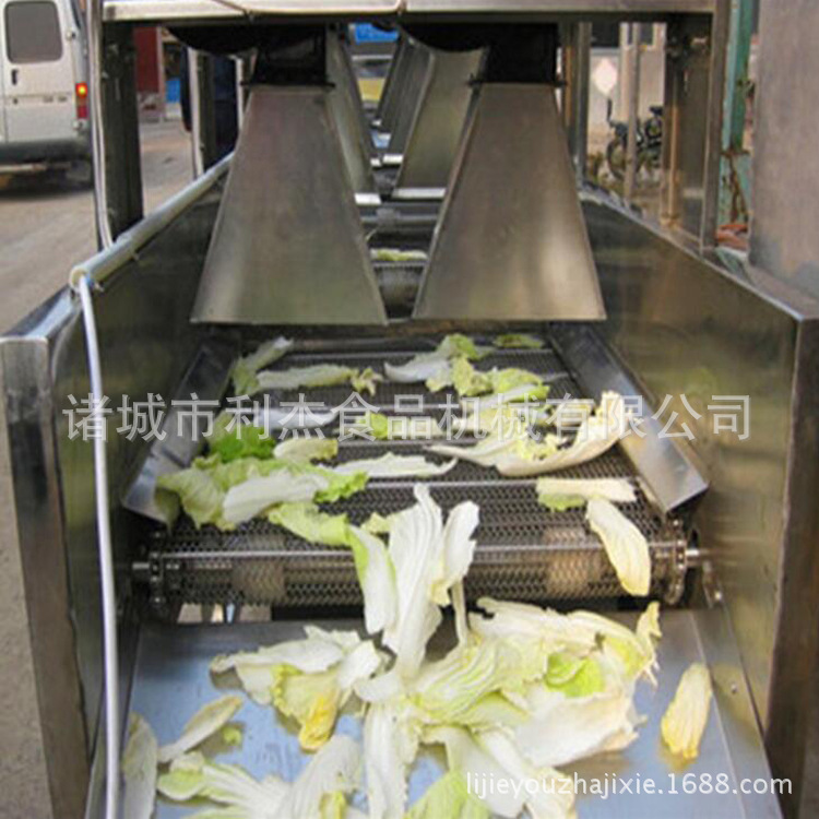 利杰LJ蔬菜清洗风干机 软包装自动翻转风干机 包装袋杀菌后风干机果蔬清洗风干线 清洗风干流水线示例图1